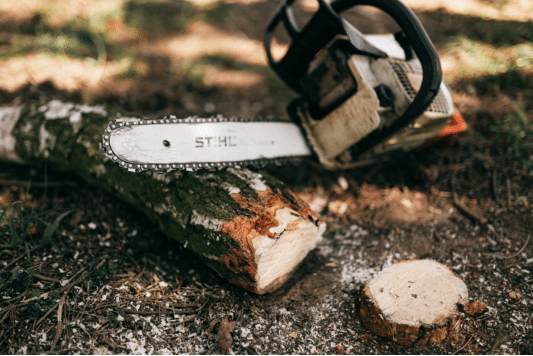 Chainsaw on the ground near a tree trunk